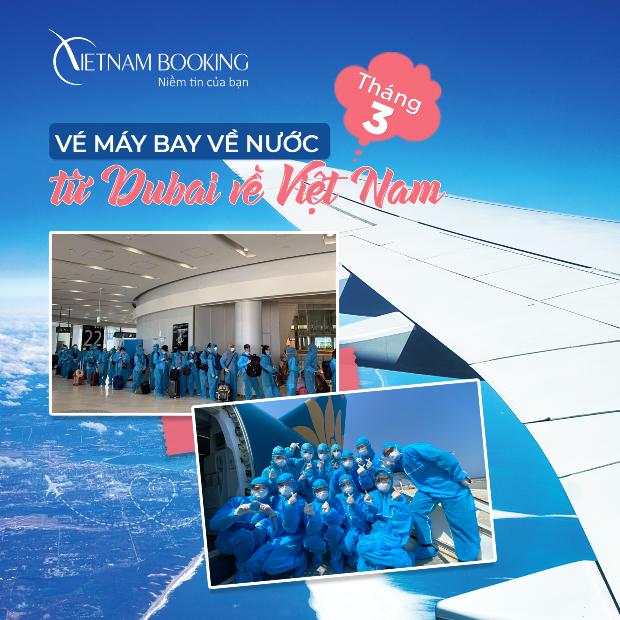 Khai thác Chuyến bay từ Dubai về Việt Nam   Dự kiến bay T3/2021