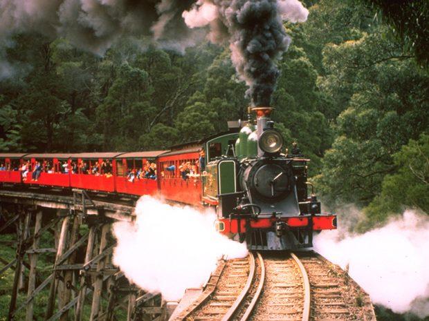 Tàu lửa hơi nước Puffing Billy đưa du khách đi qua rừng cây dương sỉ